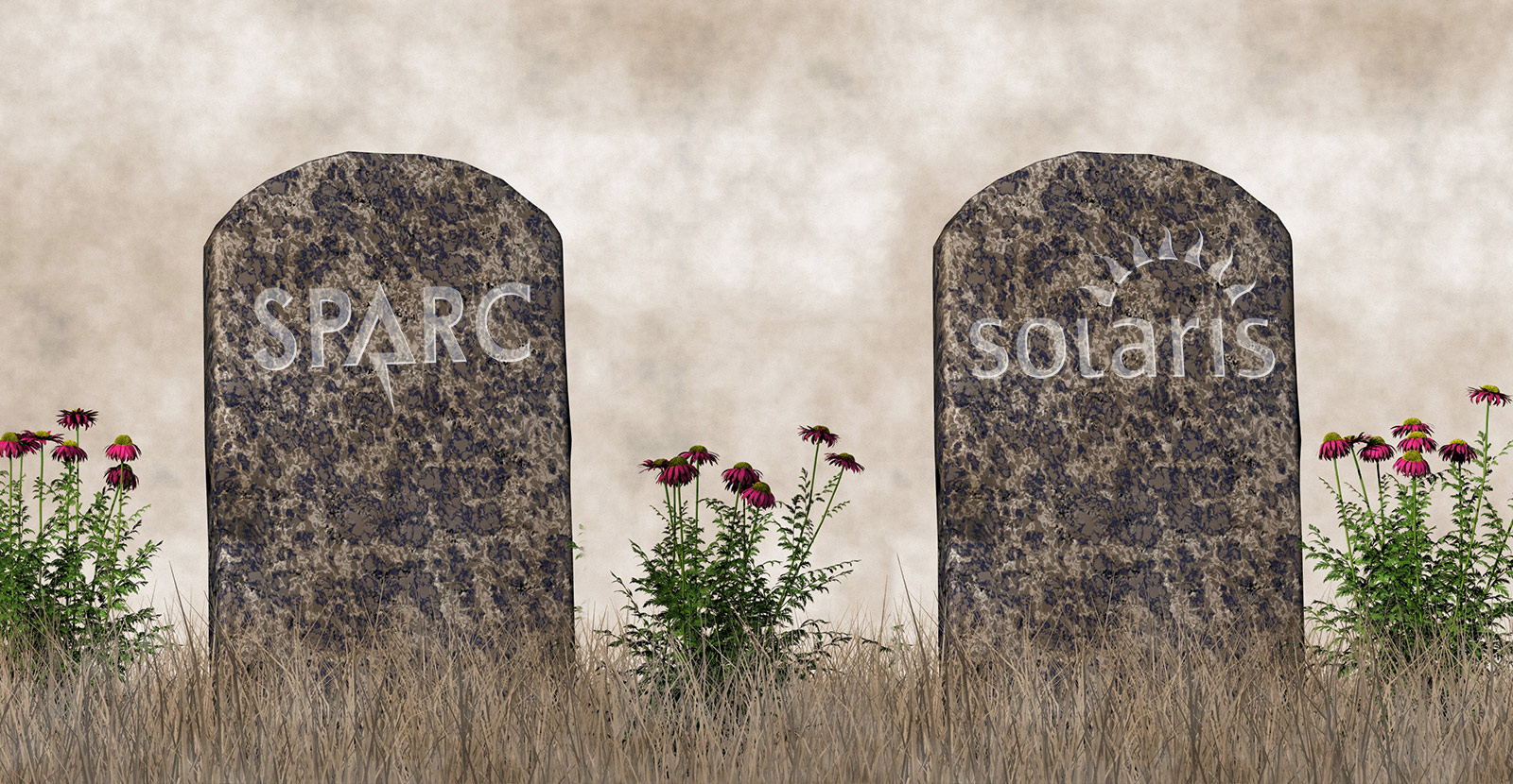 R.I.P. SPARC and Solaris.