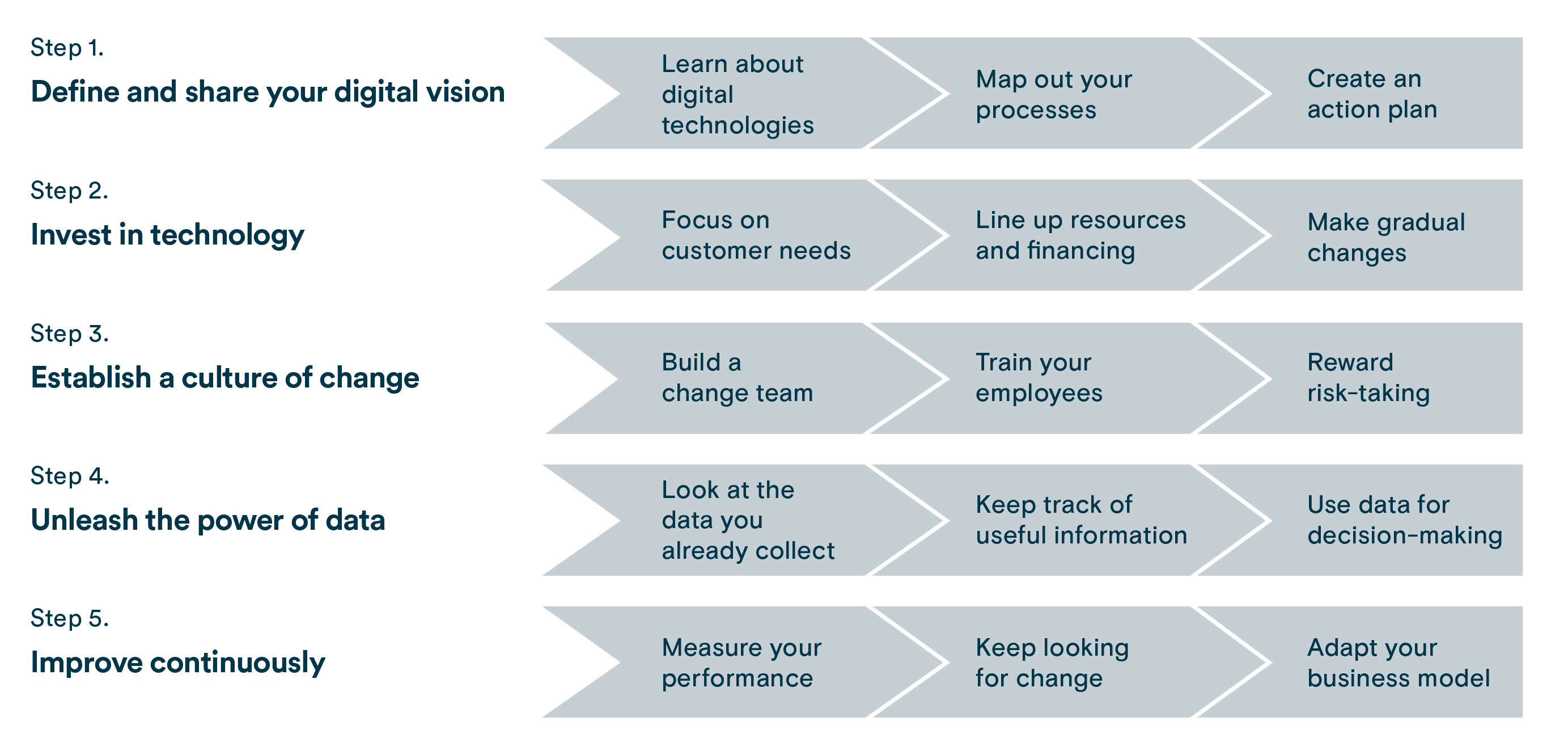 The five steps to digital maturity.