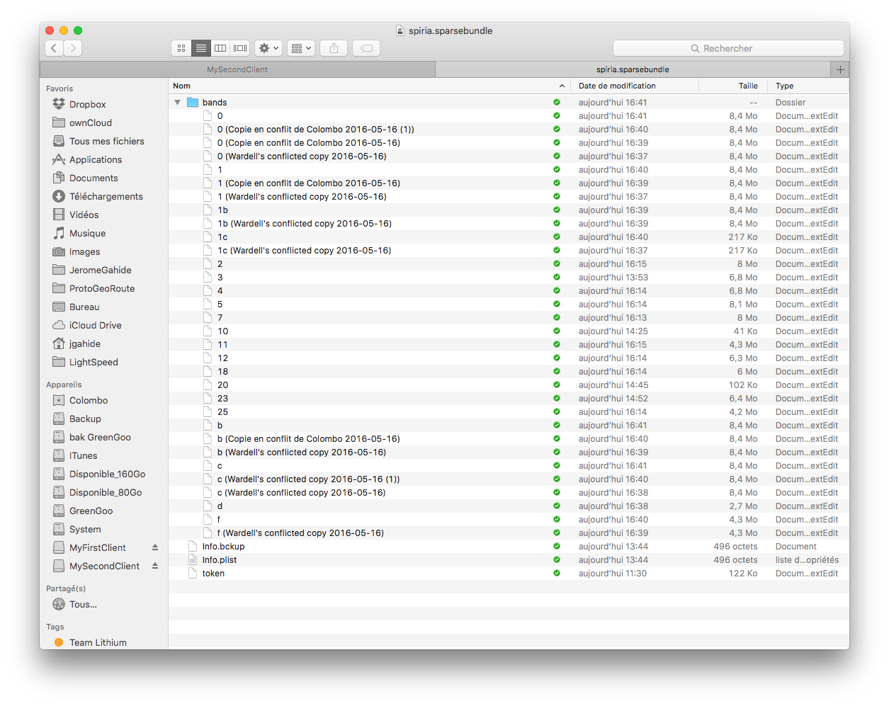 Using Sparse Bundle Images in Mac and Sharing them in Dropbox | Blog